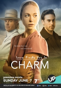 Love Finds You In Charm film afişi