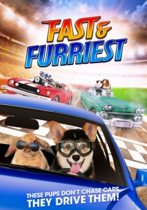 Fast And Furriest film afişi