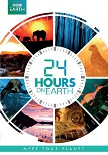 24 Hours on Earth film afişi