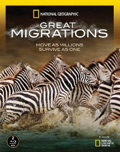 great-migrations (2010)