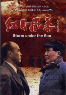 Storm Under The Sun film afişi