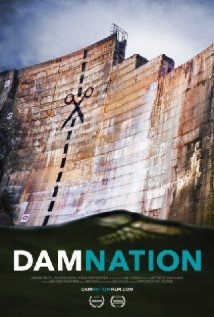 DamNation film afişi