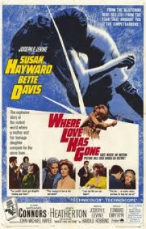 Where Love Has Gone film afişi