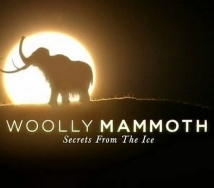 Woolly Mammoth: Secrets From The Ice film afişi