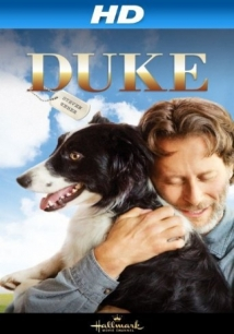 Duke film afişi