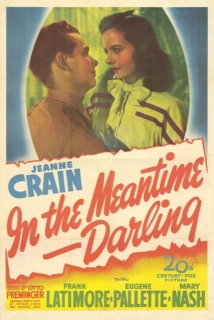 In The Meantime, Darling film afişi