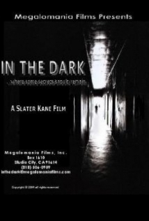In the Dark film afişi