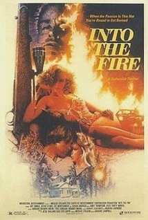 Into The Fire film afişi