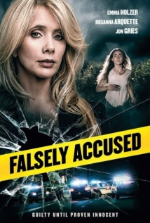 Falsely Accused film afişi