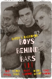 Boys Behind Bars 3 film afişi