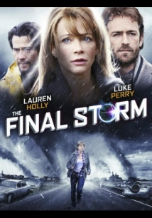 The Final Storm film afişi