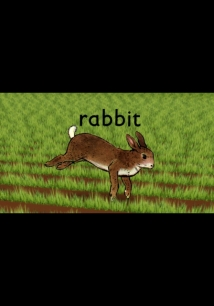 Rabbit film afişi