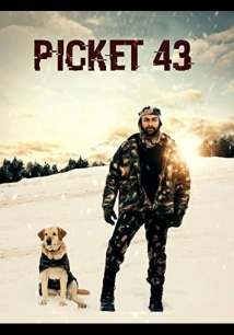 Picket 43 film afişi