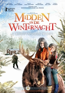 Midden In De Winternacht film afişi