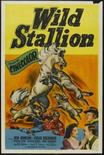 Wild Stallion film afişi