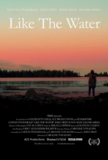 Like The Water film afişi