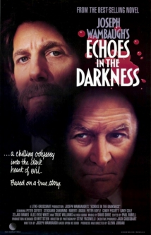 Echoes in the Darkness film afişi