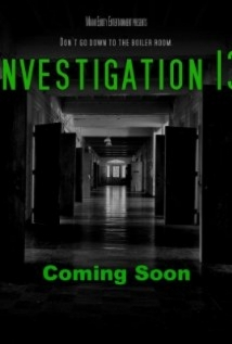 Investigation 13 film afişi