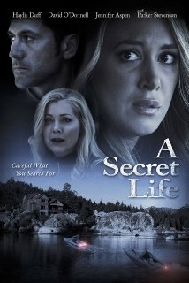 His Secret Family film afişi