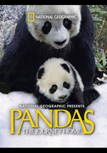 Pandas: The Journey Home film afişi