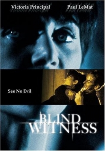 Blind Witness film afişi
