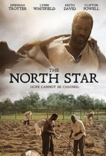 The North Star film afişi